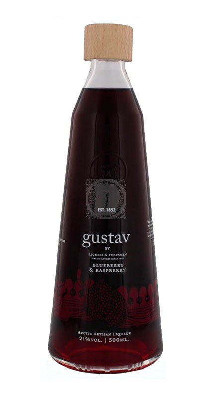 Gustav Artic Blueberry Raspberry