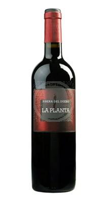 Arzuaga La Planta stor